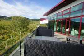 مبنى وارض زراعية , بادن ,النمسا-433_02_4843